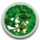 Hexagon Groen (Medium) 0,5 gram